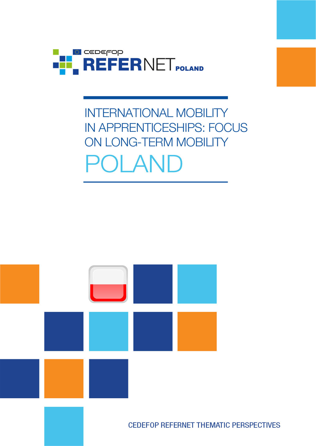 International mobility in apprenticeships: focus on long-term mobility: Poland